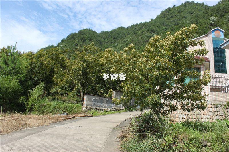 浙西大龙湾康富佳山庄_龙井峡漂流附近农家乐