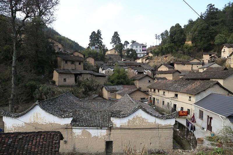 松阳黄山头村_400多年历史的古村落