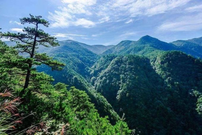 龙泉绿野山庄:龙泉山下过尘世之外的隐士生活