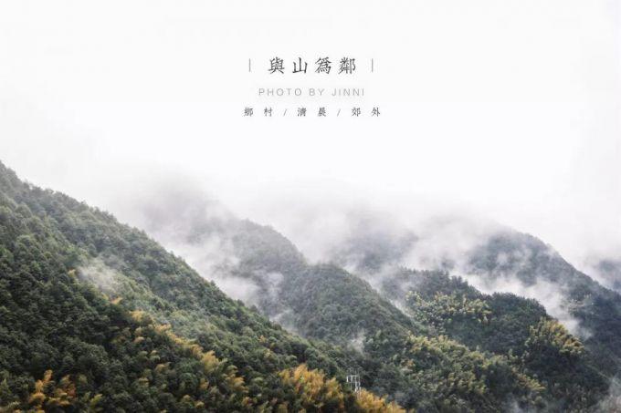 松阳原舍·揽树民宿 :古树云海的怦然心动,秘境里的亲子乐园