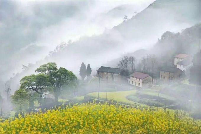 建德玖树·云上人文旅舍:住在云端赏胥岭千亩梯田油菜花
