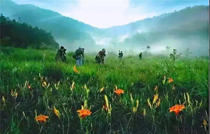 景宁畲耕公社庄园,手可摘星辰,睡进风景里